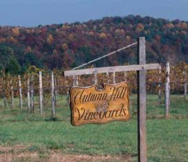 thumb_autumnhill